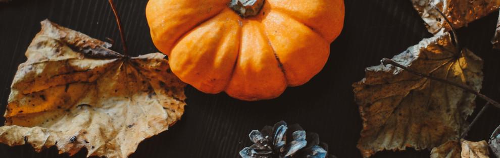De deur openzetten voor de herfst Blog BSO Buiten Herfsttafel 990x313